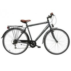 Interbike City Life 28 inch herenfiets Mat Antraciet 6SP